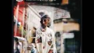 The Professionals (Oh No & Madlib) - I Want It Back