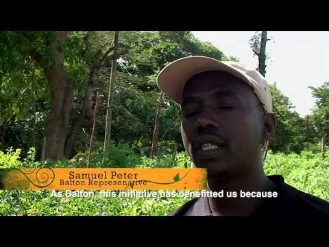 "Tanzanian Smallholder Farmers ""GO ORGANIC"""