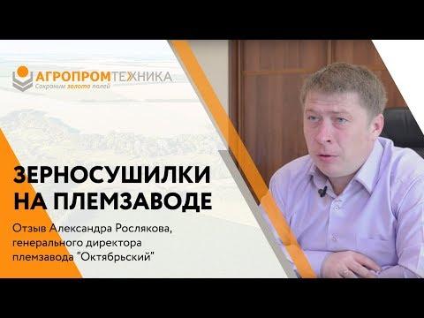 Директор племзавода Октябрьский - у нас 4 Зерносушилки С-30