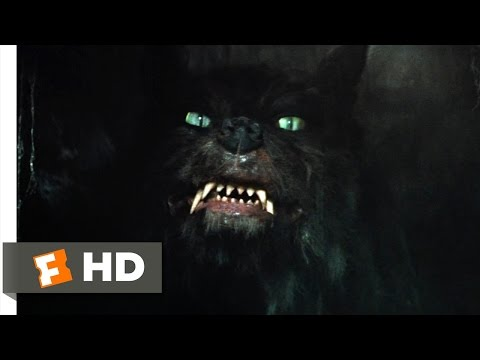 The Neverending Story (7/10) Movie CLIP -