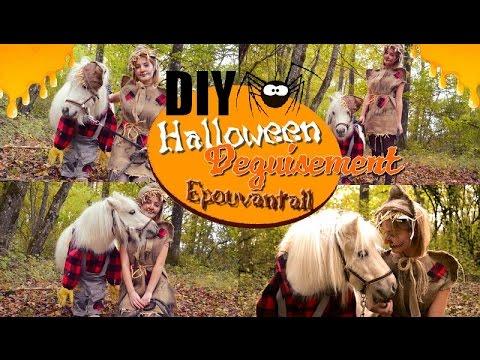 DIY Spécial Halloween : Déguisement épouvantail pour poney / cavalier 🎃🕸🕷