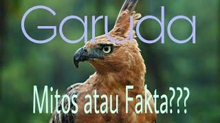 Lagu Sunda Manuk Dadali -Indonesian Traditional Song
