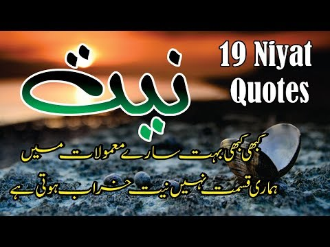 Niyat 19 best Motivational quotes in hindi urdu with voice and images  Niyat aqwal e zareen