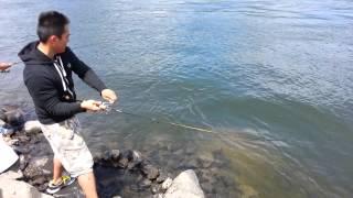 Hmonlg LAO fishing shad @ bonneville