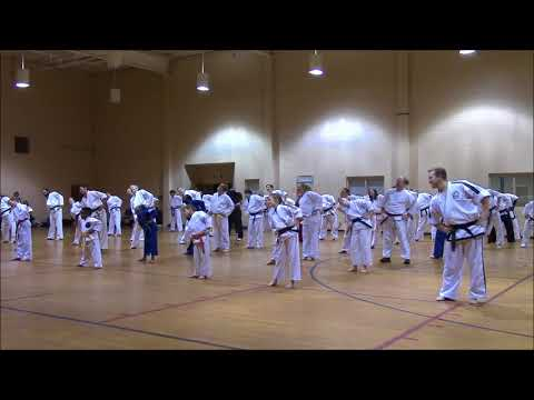 Black Belt Workout #30: Taekwondo Summer Training Seminar With Grand Master S. L. Kopperud