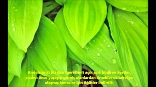 NUR-(NÛR)-SURESİ-Ebubekir Şatiri-Abu Bakr Al Shatri