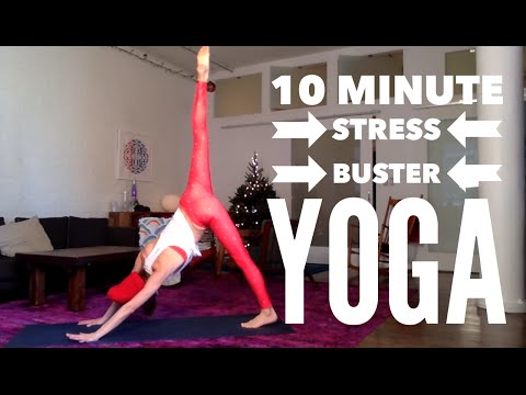 10 Minute Holiday Stress Be Gone Yoga Routine | Tara Stiles (видео)