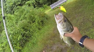Video How to Fish a Squarebill Crankbait for Bass by 1Rod1ReelFishing MP3, 3GP, MP4, WEBM, AVI, FLV Agustus 2018