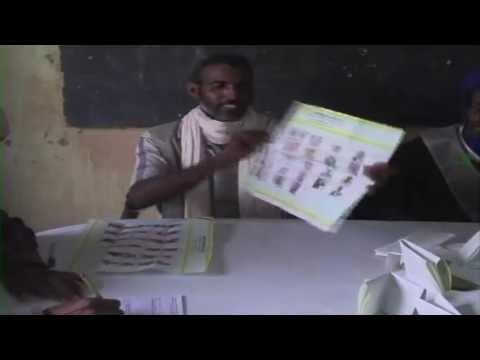 Mauritania: Mali Elections In Mauritania