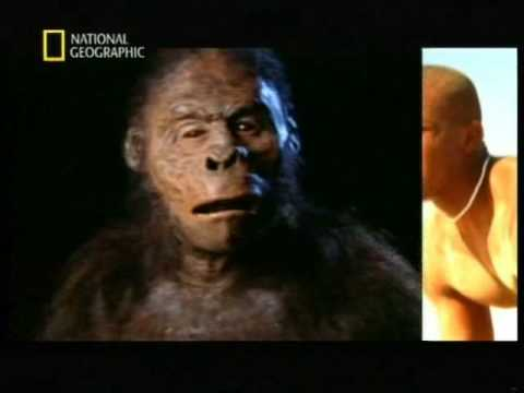 Documentales National Geographic – El Origen del Hombre