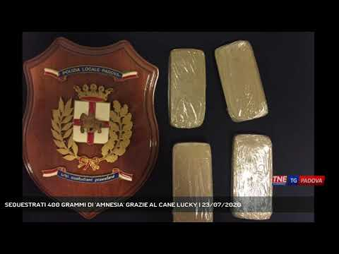 SEQUESTRATI 400 GRAMMI DI 'AMNESIA' GRAZIE AL CANE LUCKY | 23/07/2020