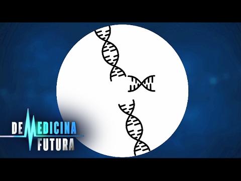 Медицина будущего. Генетика. Редактирование генома