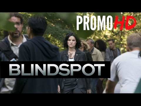 Blindspot 2.04 (Preview)