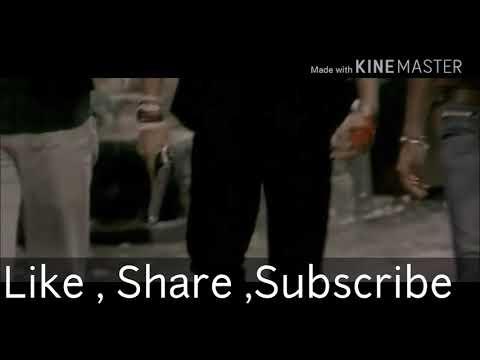 Video Shootout at Lokhandwala  Theme download in MP3, 3GP, MP4, WEBM, AVI, FLV January 2017