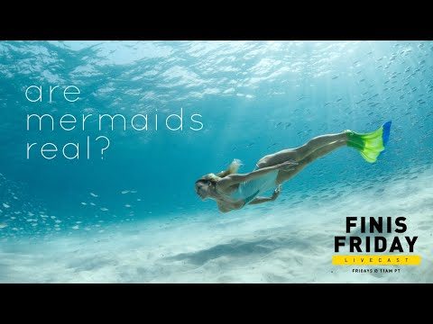 FINIS Friday | Episode 6: Are Mermaids Real?