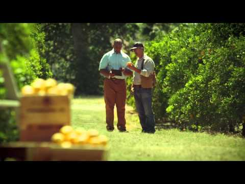 """, title : '""""Verizon Field Force Manager Commercial"""" (Full Version)'"""