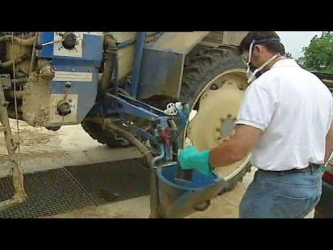 Γαλλία: Ένοχη και πάλι η Monsanto