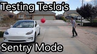 Video Does Tesla's Sentry Mode Work? MP3, 3GP, MP4, WEBM, AVI, FLV Juli 2019