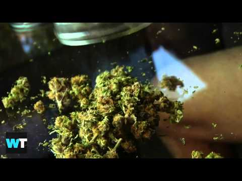 Cannabis Super Bowl Commercial 2014 for Colorado BANNED | Medical Marijuana Commercial