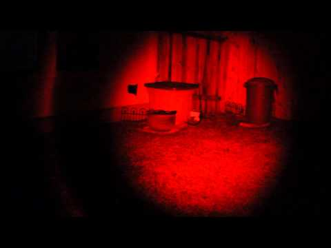 Low light camera test with a Hawglite flashlight