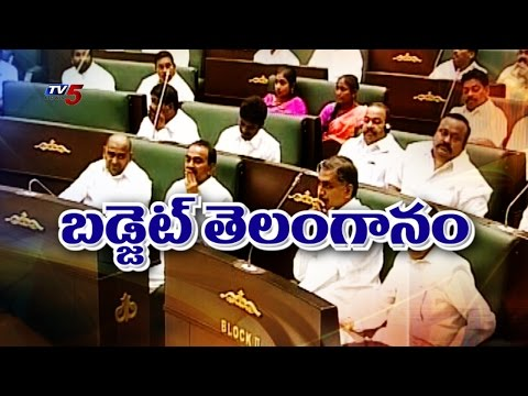 T.Government Ready For Budget Meetings | Telangana : TV5 News