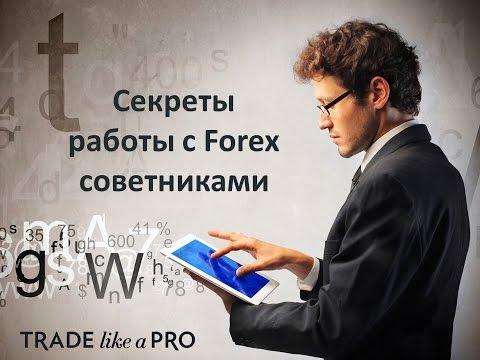 Оптимизация форекс советник