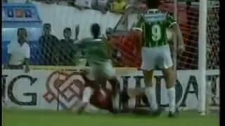 Pelo jogo de ida da final do Brasileiro de 93, o Vitória encarou o Palmeiras em Salvador. Os baianos queriam vencer para largar...