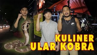 Video KULINER ULAR KOBRA Feat Kim Hyung Soo MMA Fighter !!! MP3, 3GP, MP4, WEBM, AVI, FLV September 2018