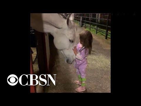 la-bambina-che-conforta-il-cavallo