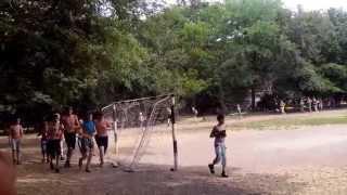 Ромашка, лето 2014 (видео №14)
