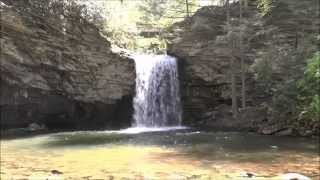Stony Creek (VA) United States  city photos gallery : The Falls of Little Stony Creek, Jefferson National Forest, Dungannon, VA.