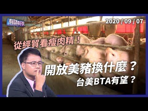 開放瘦肉精美豬換什麼?台美FTA有望?(公共電視 - 有話好說)
