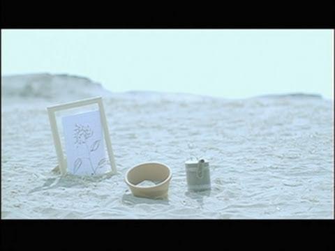 , title : '明日の花(MV) / 大知正紘 [公式]'