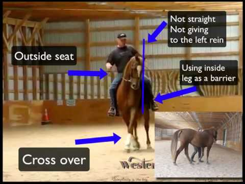 how is control presented in horse