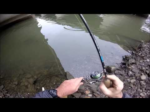 Urban Bass - Four Mile Run, Alexandria, VA