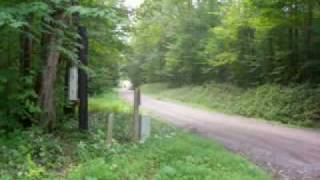 9. Yamaha Raptor 350 at top speed @ around 70 vs (older) Grizzly 550 at top speed