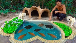 Feeding My Turtles Ready For Winter With Red fish Pond And Mud Dog House