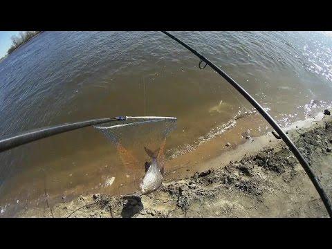 ловим леща в москве реке