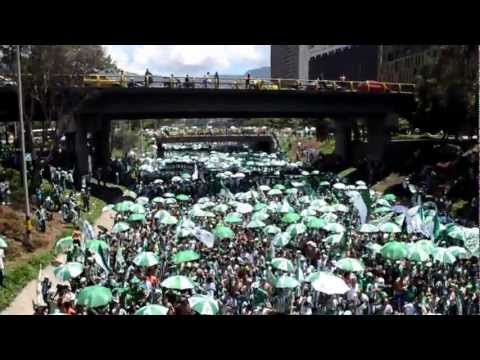"""""""Cantar soñar gritar"""" (Verdolaga acá estoy de nuevo) Séptimo día del hincha verde - Los del Sur - Atlético Nacional"""