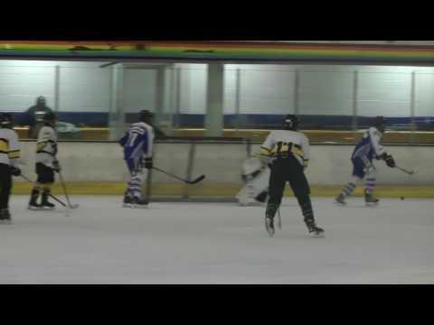Peterborough v Bracknell Under 18s Ice hockey Match 22 4 2017