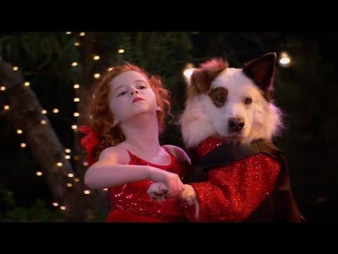 Собака точка ком (Сезон 2 Серия 23) (видео)