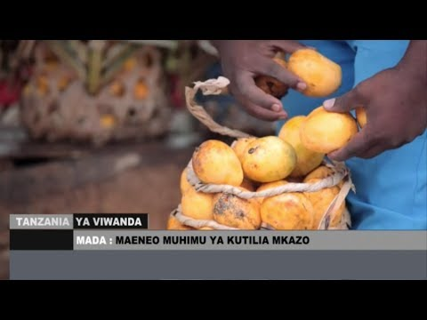TANZANIA YA VIWANDA : MAENEO MUHIMU YA KUTILIA MKAZO