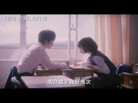 12/6【向陽處的她】中文預告 - 上野樹里篇