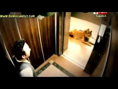 رامز قلب الأسد مصطفى قمر كاملة | Ramiz Qalb El Asad 2013 (видео)
