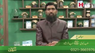 Download Video Tib E Nabvi | Hub ul Irshad | HTV MP3 3GP MP4
