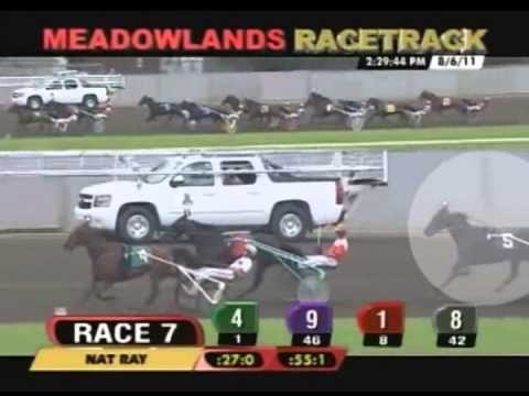 user generated movie - RACE DAY is a short documentary about harness horse racing, created with user-generated content. The film captures a typical day in the life of harness racin...