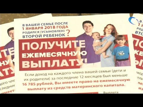 Пенсионный фонд рассказал об изменениях в выплатах материнского капитала, пенсий и ЕДВ