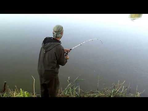 рыбалка на сазана в хакасии видео 2016
