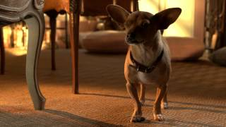 Nonton Beverly Hills Chihuahua 3  Viva La Fiesta  Film Subtitle Indonesia Streaming Movie Download