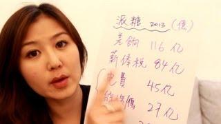 睇政府盤數-財政預算案 (政治BB班第4課)